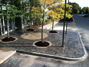 New landing with circlular paver patterns around the trees and new pavers for the parking areas.