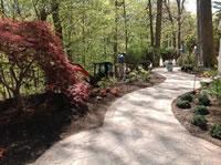 Walkway & Perennials